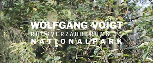 Wolfgang Voigt tiene nuevo disco conceptual