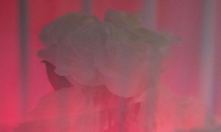 Johnny Jewel (Chromatics) pone música a un poema de Chloë Sevigny