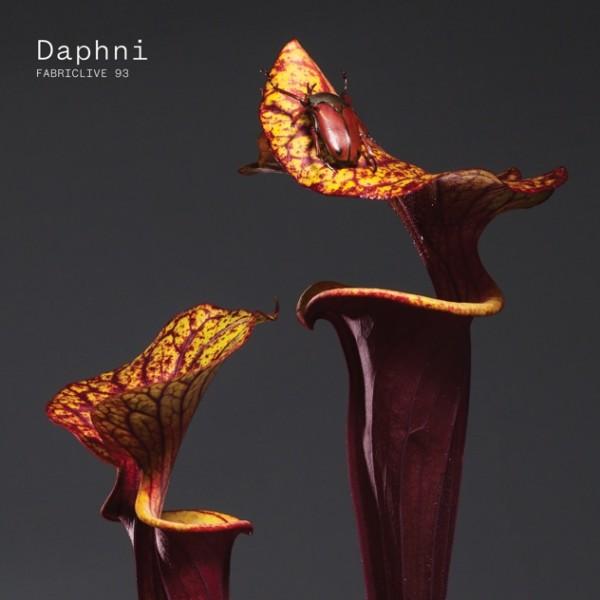 daphni-fabriclive