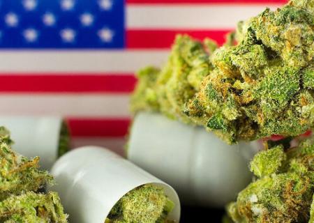 USA no espera ni a Trump ni a Biden para seguir legalizando la marihuana